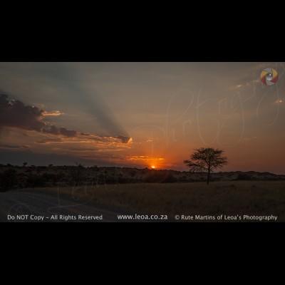 7089 Kgalagadi Sunrise