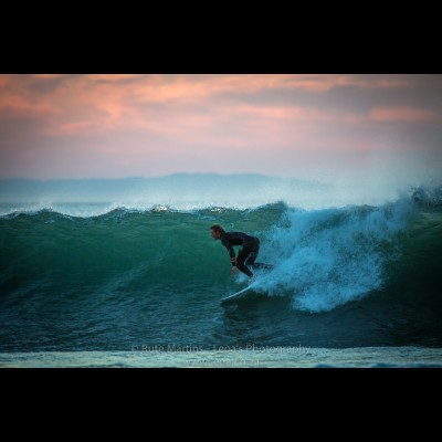 5497 Surfing in JBay